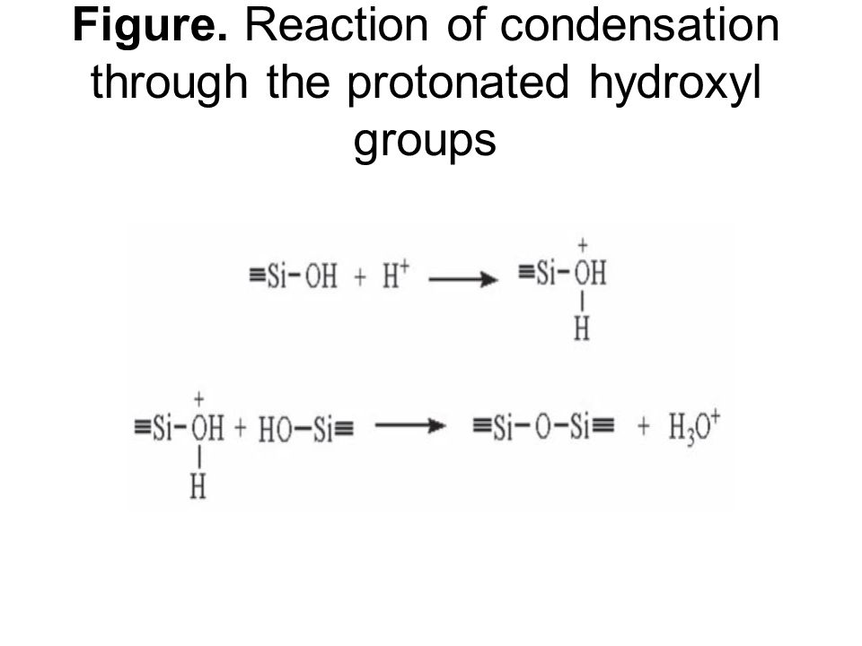 Figure. Reaction of condensation through the protonated hydroxyl groups