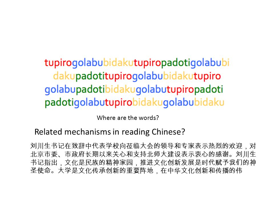 Related mechanisms in reading Chinese.