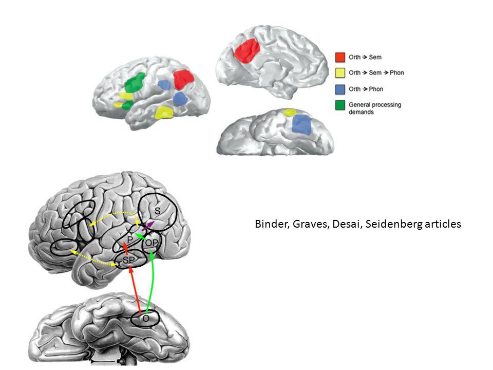 Binder, Graves, Desai, Seidenberg articles