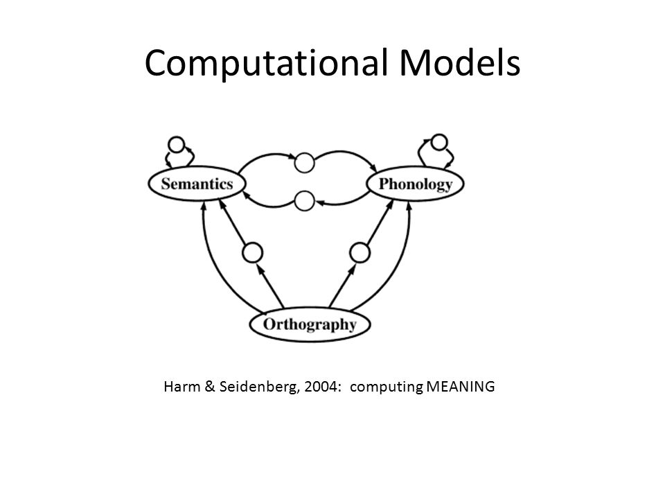 Many other models Many people, labs