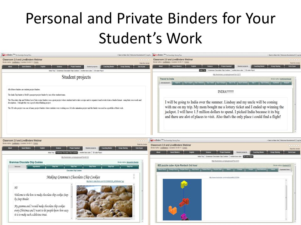 Student Created Multimedia Group Projects