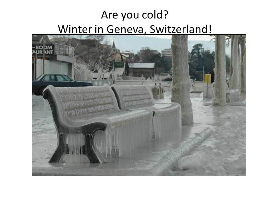 Are you cold Winter in Geneva, Switzerland!