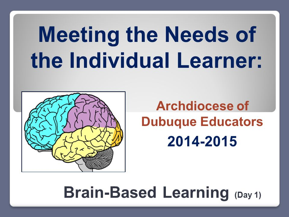 Meeting the Needs of the Individual Learner: Brain-Based Learning (Day 1) 2014-2015 Archdiocese of Dubuque Educators