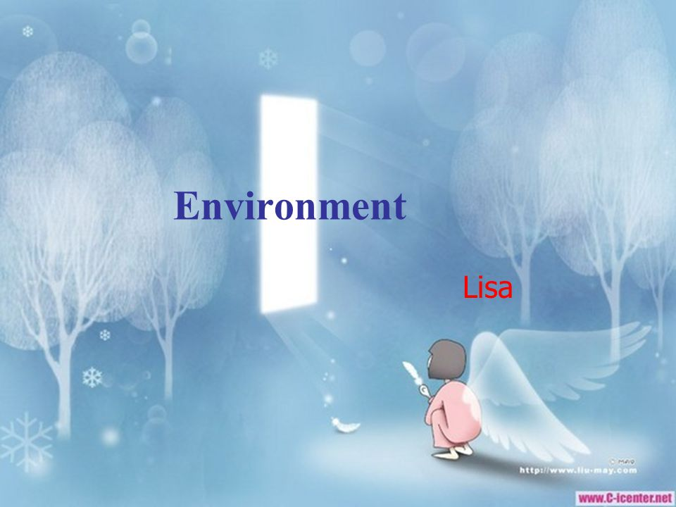Environment Lisa