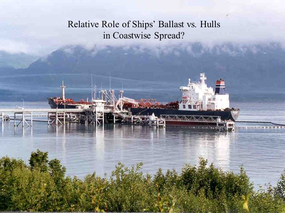 Relative Role of Ships' Ballast vs. Hulls in Coastwise Spread?