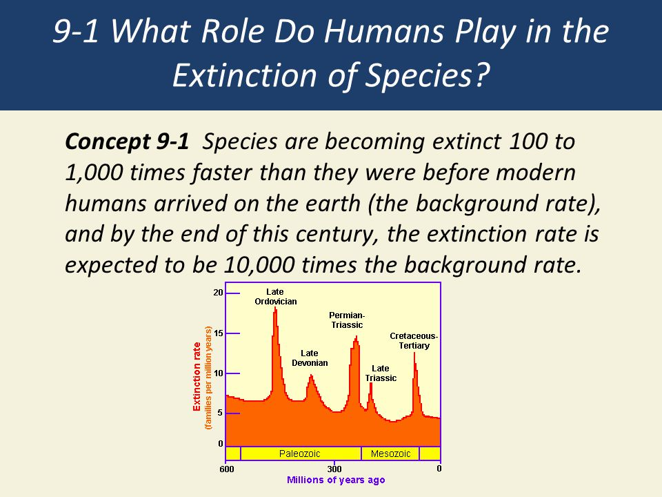 9-1 What Role Do Humans Play in the Extinction of Species.