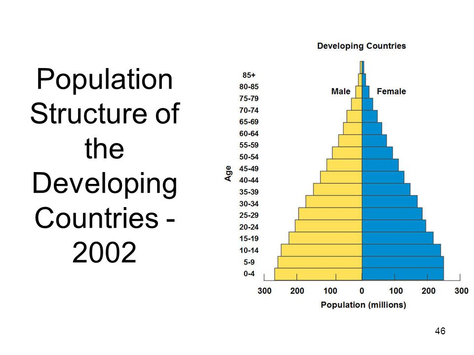 46 Population Structure of the Developing Countries - 2002