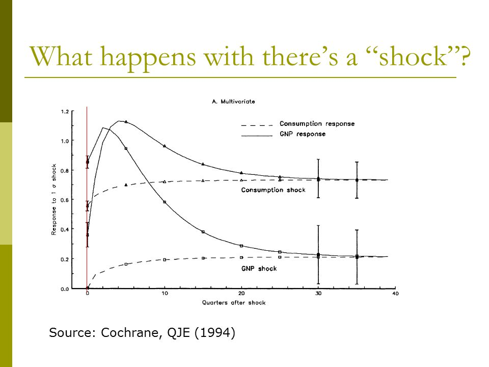 "What happens with there's a ""shock""? Source: Cochrane, QJE (1994)"