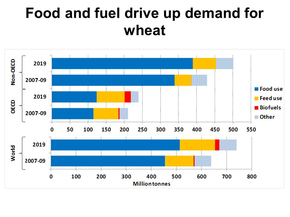 Food and fuel drive up demand for wheat + 34 Mt