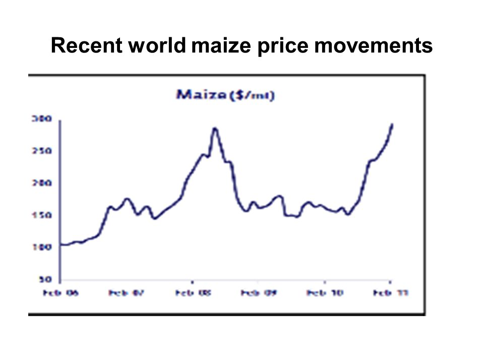 Recent world maize price movements