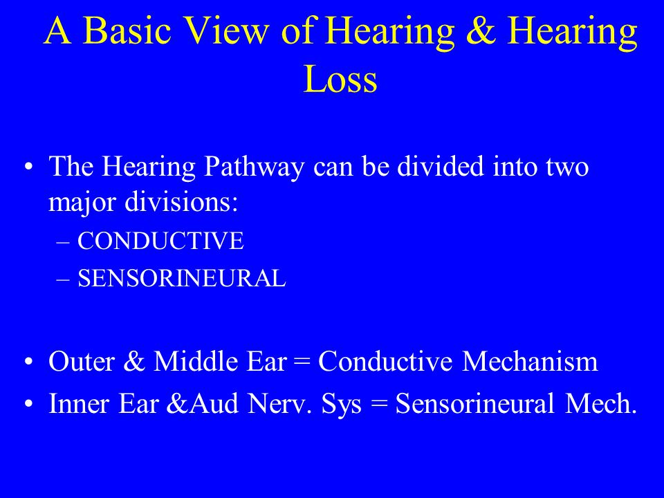 A Basic View of Hearing & Hearing Loss The Hearing Pathway can be divided into two major divisions: –CONDUCTIVE –SENSORINEURAL Outer & Middle Ear = Conductive Mechanism Inner Ear &Aud Nerv.