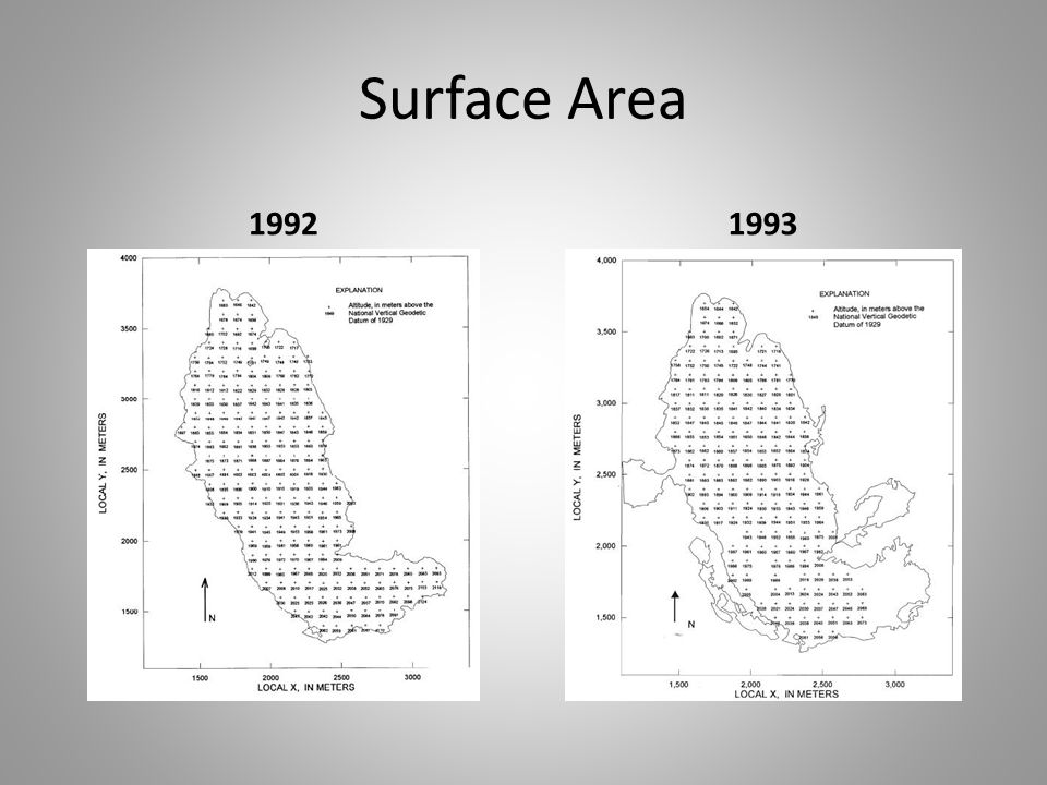Surface Area 19921993