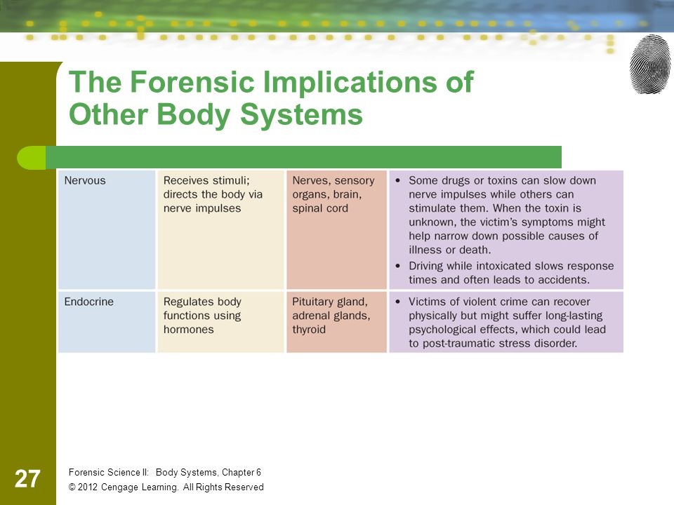 27 Forensic Science II: Body Systems, Chapter 6 © 2012 Cengage Learning.
