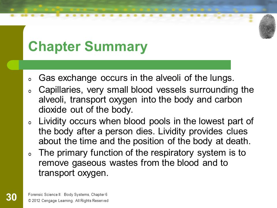 30 Forensic Science II: Body Systems, Chapter 6 © 2012 Cengage Learning.