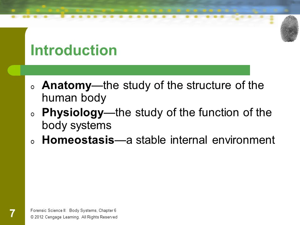 28 Forensic Science II: Body Systems, Chapter 6 © 2012 Cengage Learning.