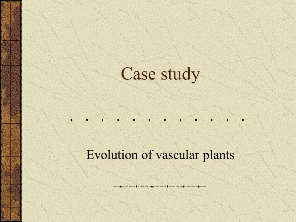 Case study Evolution of vascular plants