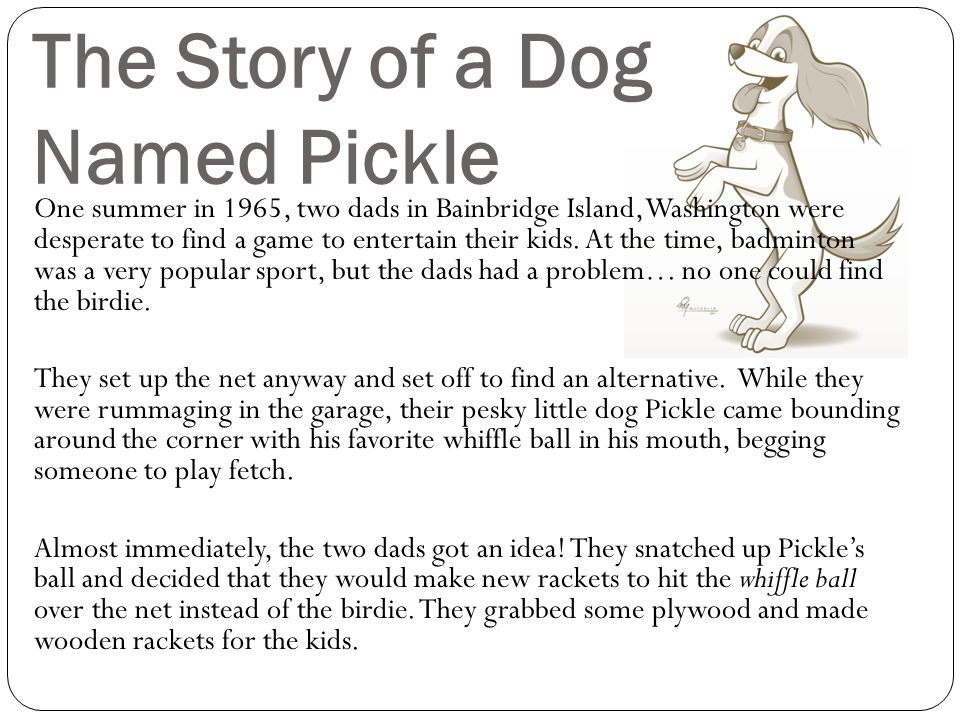 The Story of a Dog Named Pickle One summer in 1965, two dads in Bainbridge Island, Washington were desperate to find a game to entertain their kids. A