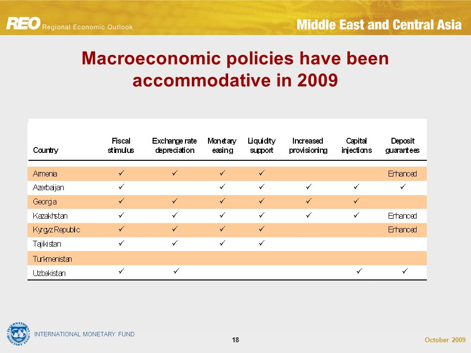 INTERNATIONAL MONETARY FUND October 200918 Macroeconomic policies have been accommodative in 2009