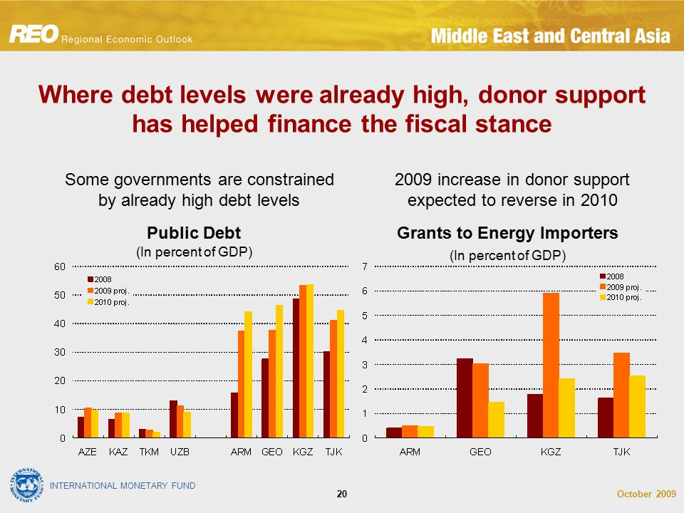 INTERNATIONAL MONETARY FUND October 200920 Where debt levels were already high, donor support has helped finance the fiscal stance 2009 increase in donor support expected to reverse in 2010 Some governments are constrained by already high debt levels Grants to Energy Importers (In percent of GDP) Public Debt (In percent of GDP)