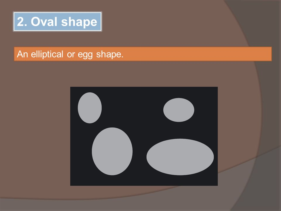 2. Oval shape An elliptical or egg shape.