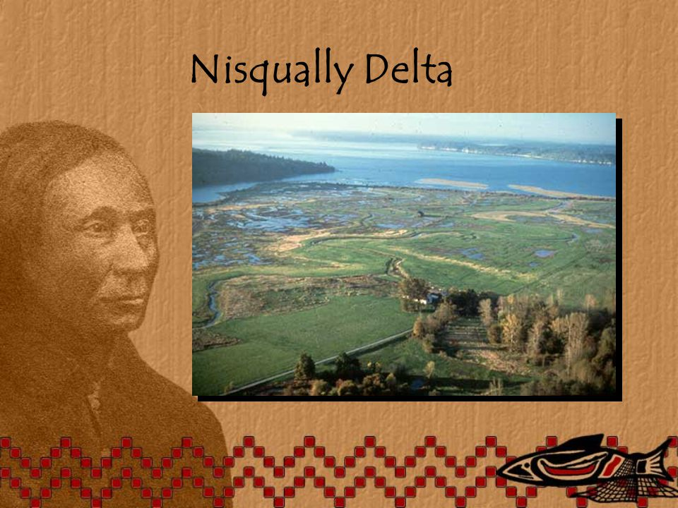 Nisqually Delta