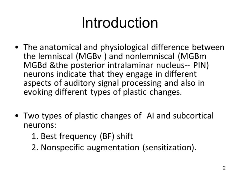 2 Introduction The anatomical and physiological difference between the lemniscal (MGBv ) and nonlemniscal (MGBm MGBd &the posterior intralaminar nucleus-- PIN) neurons indicate that they engage in different aspects of auditory signal processing and also in evoking different types of plastic changes.