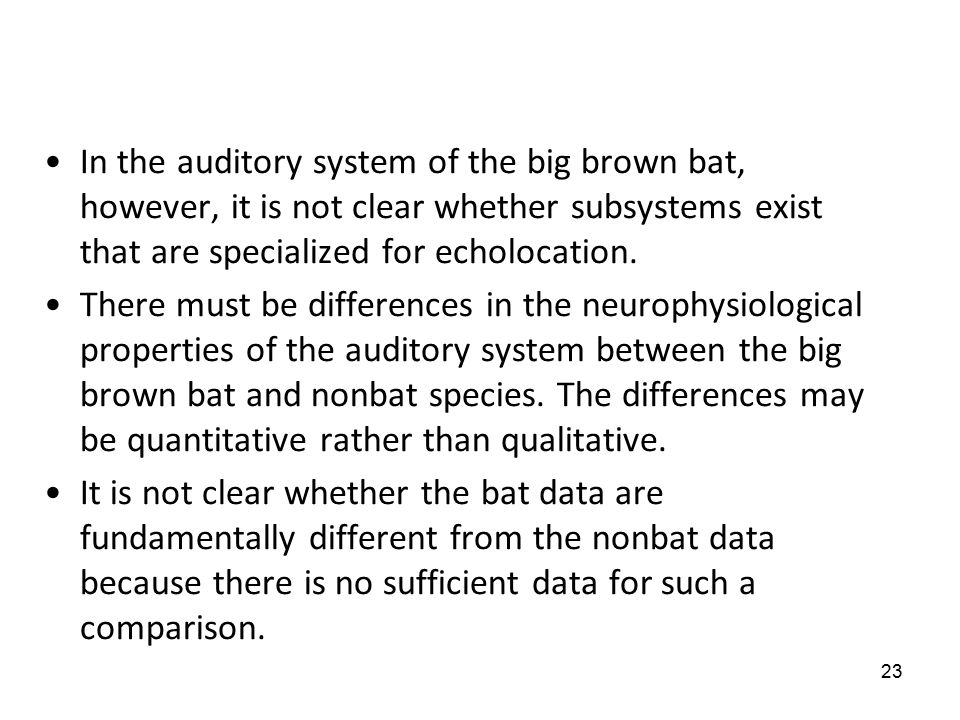 23 In the auditory system of the big brown bat, however, it is not clear whether subsystems exist that are specialized for echolocation.