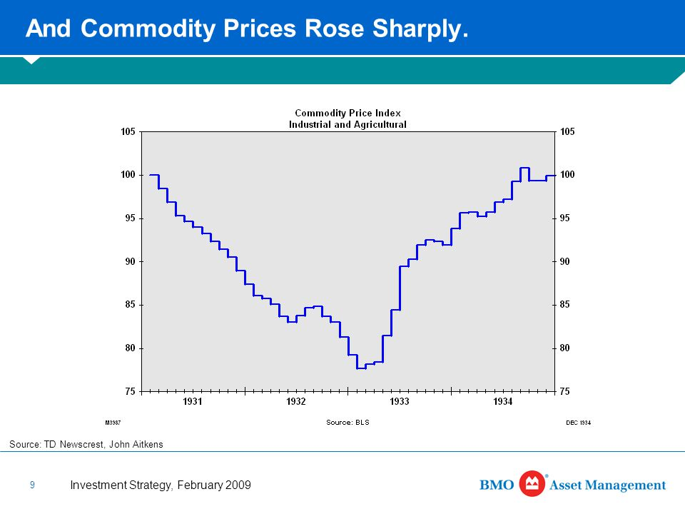 Investment Strategy, February 2009 9 And Commodity Prices Rose Sharply.