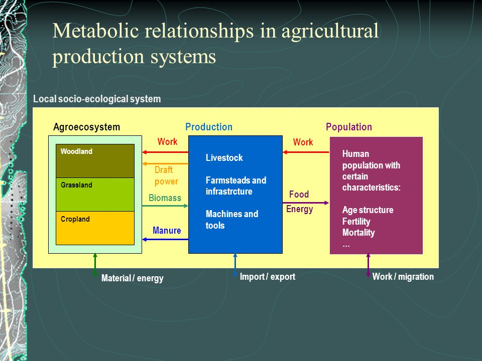 Metabolic relationships in agricultural production systems Agroecosystem Woodland Grassland Cropland Local socio-ecological system Production Livestock Farmsteads and infrastrcture Machines and tools Population Human population with certain characteristics: Age structure Fertility Mortality … Work / migrationImport / export Material / energy Work Draft power Manure Food Biomass Energy