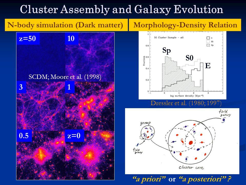 Cluster Assembly and Galaxy Evolution Morphology-Density RelationN-body simulation (Dark matter) SCDM; Moore et al.