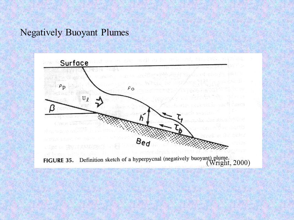 Negatively Buoyant Plumes (Wright, 2000)