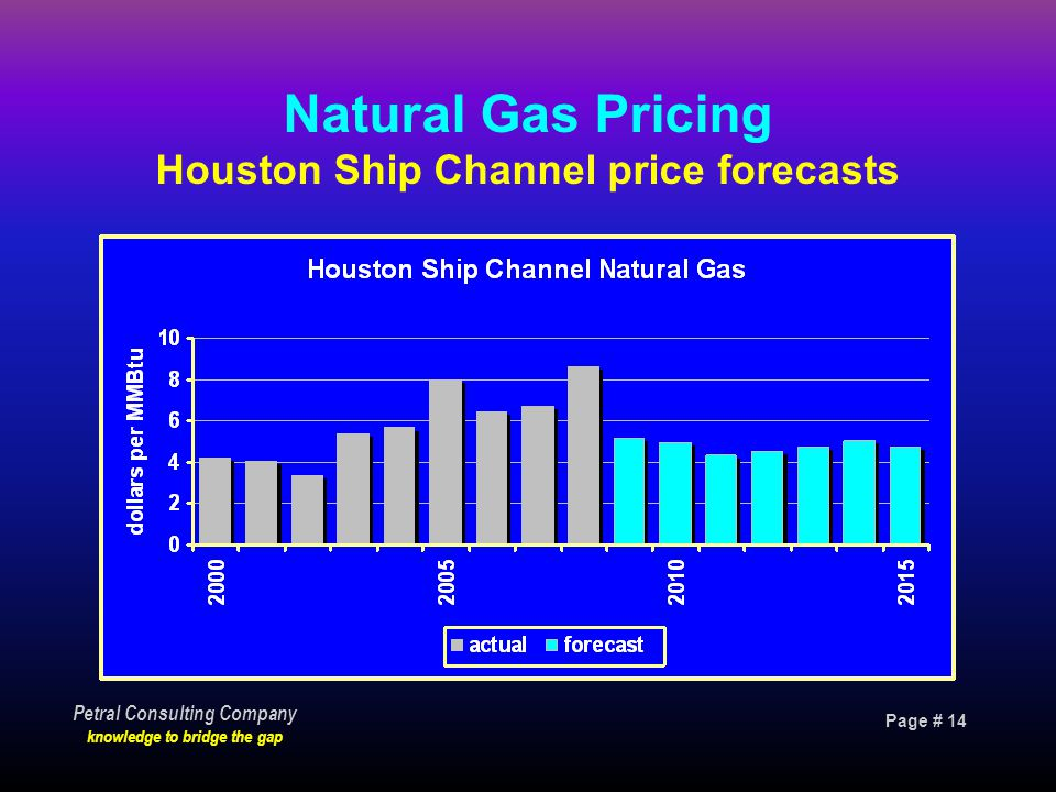 Page # 14 Petral Consulting Company knowledge to bridge the gap Natural Gas Pricing Houston Ship Channel price forecasts