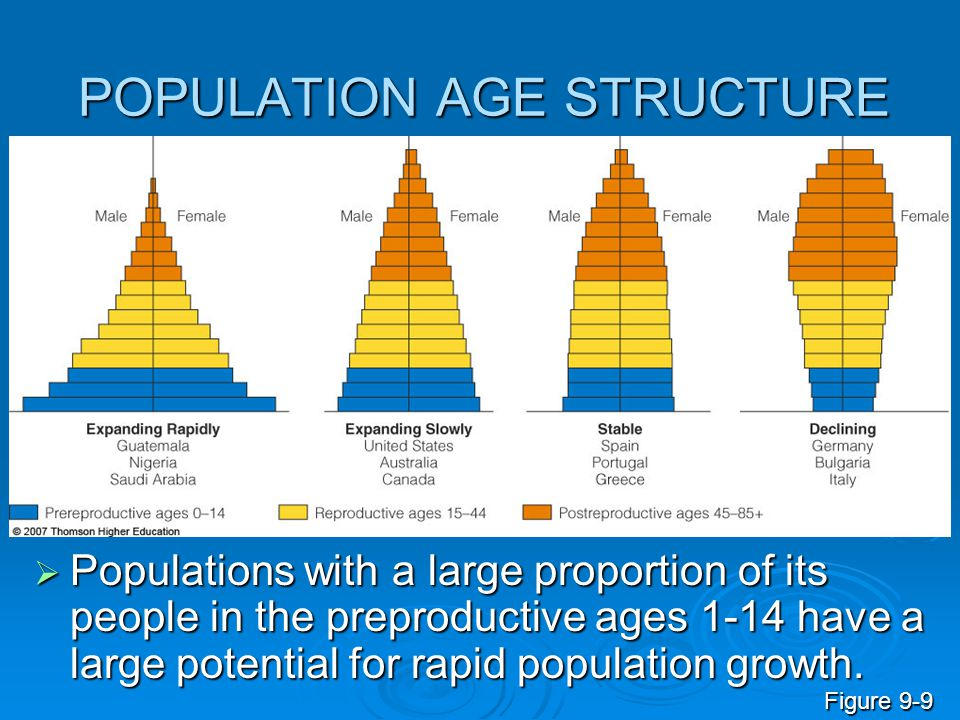 POPULATION AGE STRUCTURE  Populations with a large proportion of its people in the preproductive ages 1-14 have a large potential for rapid populatio