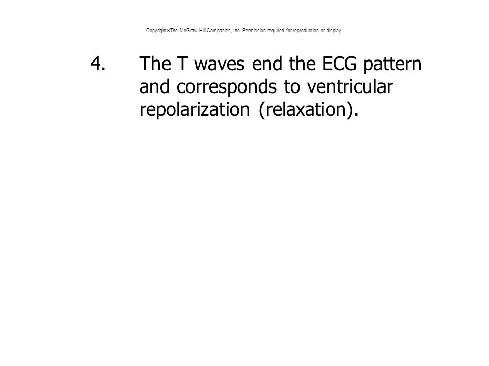 4.The T waves end the ECG pattern and corresponds to ventricular repolarization (relaxation).
