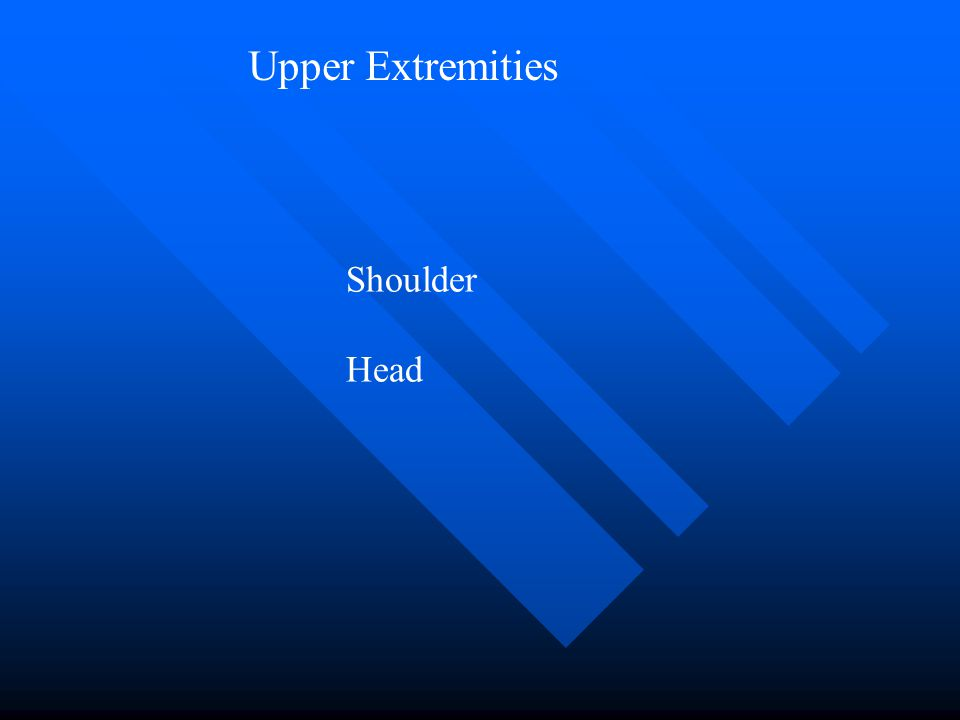 Upper Extremities Shoulder Head
