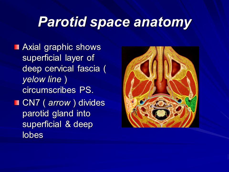 Metastatic disease, nodal, parotid Lymphangitic or hematogenous tumor spread to intraglandulr parotid lymph nodes.