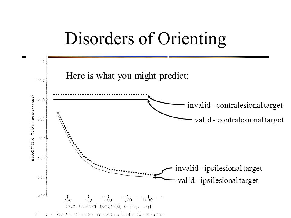 Disorders of Orienting valid - contralesional target valid - ipsilesional target invalid - contralesional target invalid - ipsilesional target Here is what you might predict: