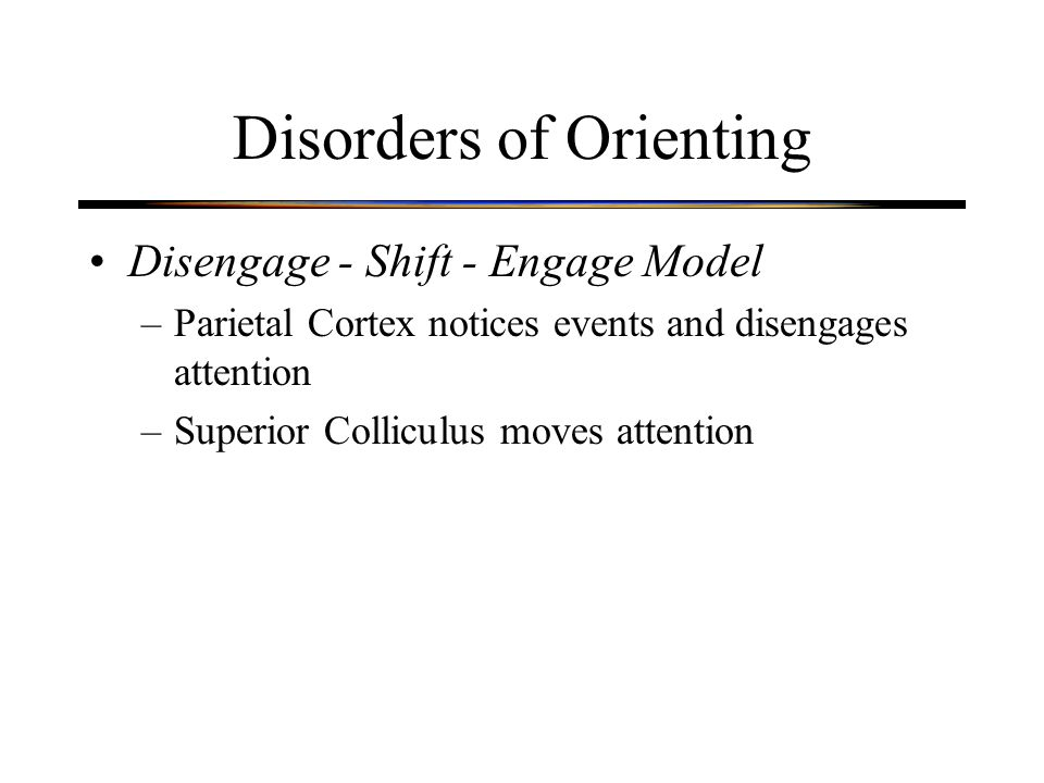 Disorders of Orienting Disengage - Shift - Engage Model –Parietal Cortex notices events and disengages attention –Superior Colliculus moves attention
