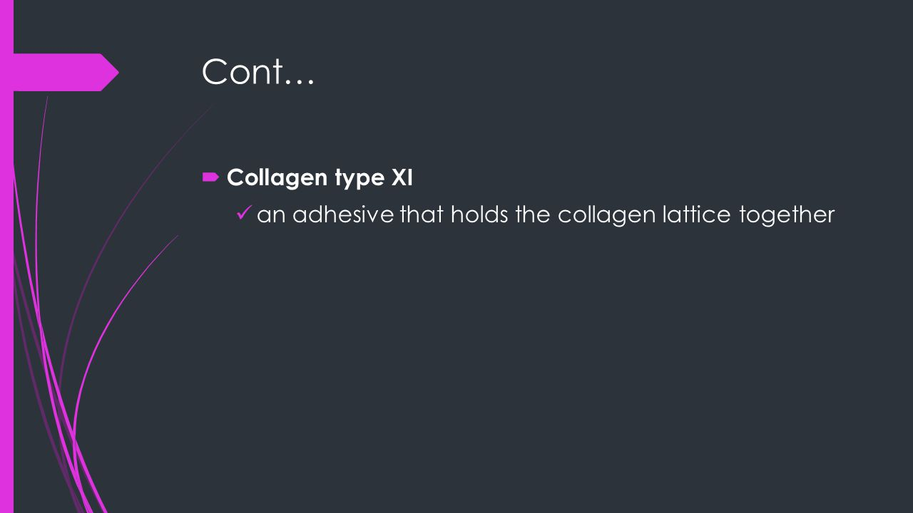 Cont…  Collagen type XI an adhesive that holds the collagen lattice together