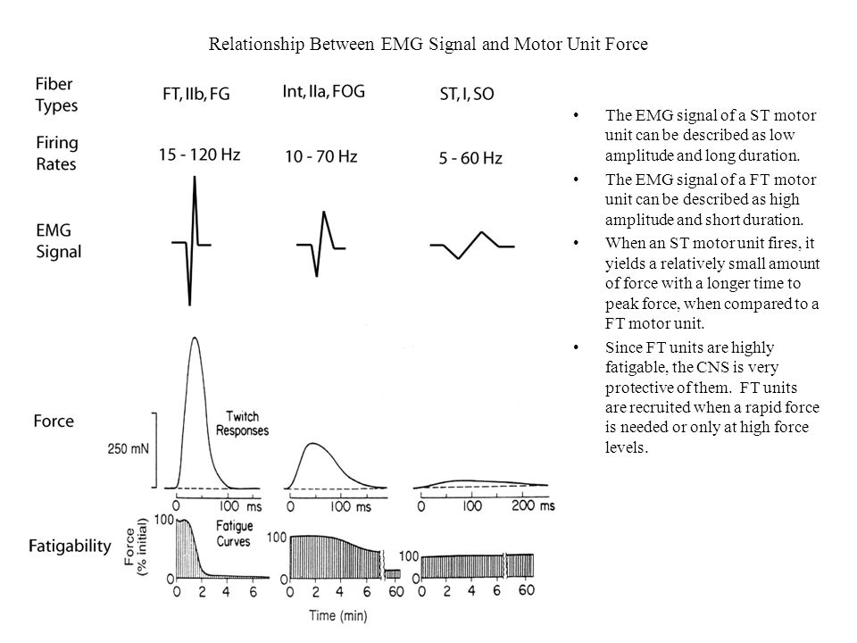 Different firing rate control strategies: In Figure A units increase their firing sharply after being recruited, show a plateau, and then increase sharply and the higher force levels.