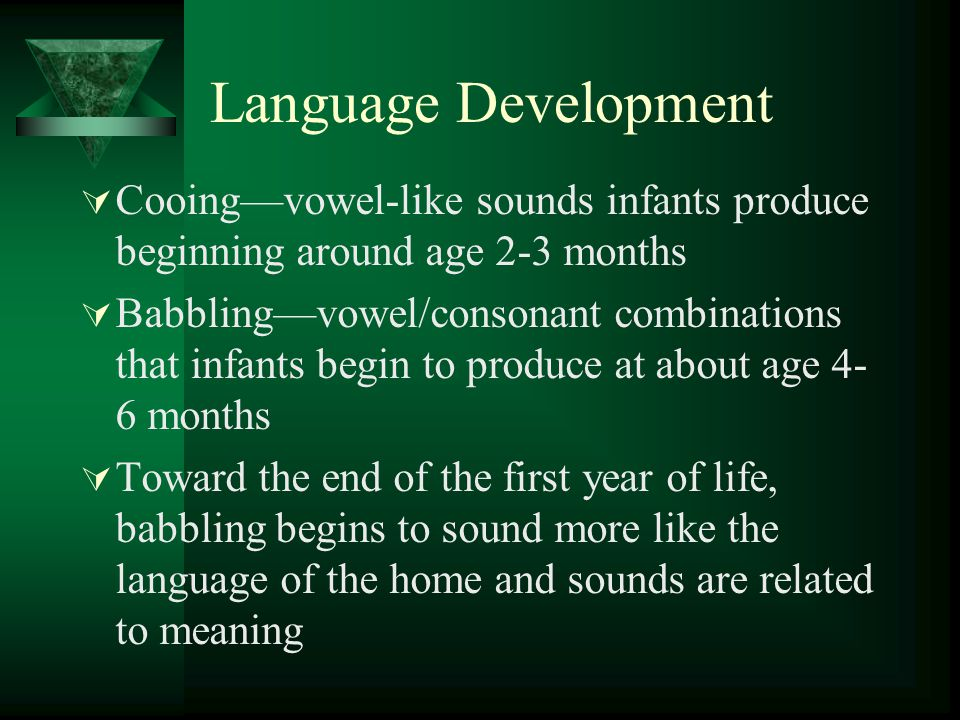 Language Development  Cooing—vowel-like sounds infants produce beginning around age 2-3 months  Babbling—vowel/consonant combinations that infants b