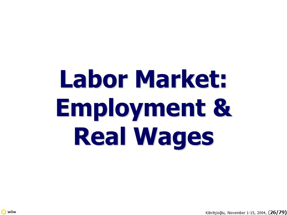 Kibritçioğlu, November 1-15, 2004, (26/79) Labor Market: Employment & Real Wages
