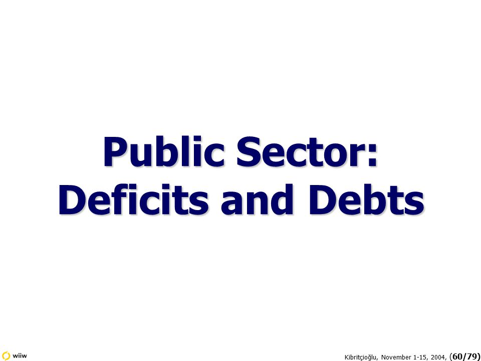 Kibritçioğlu, November 1-15, 2004, (60/79) Public Sector: Deficits and Debts