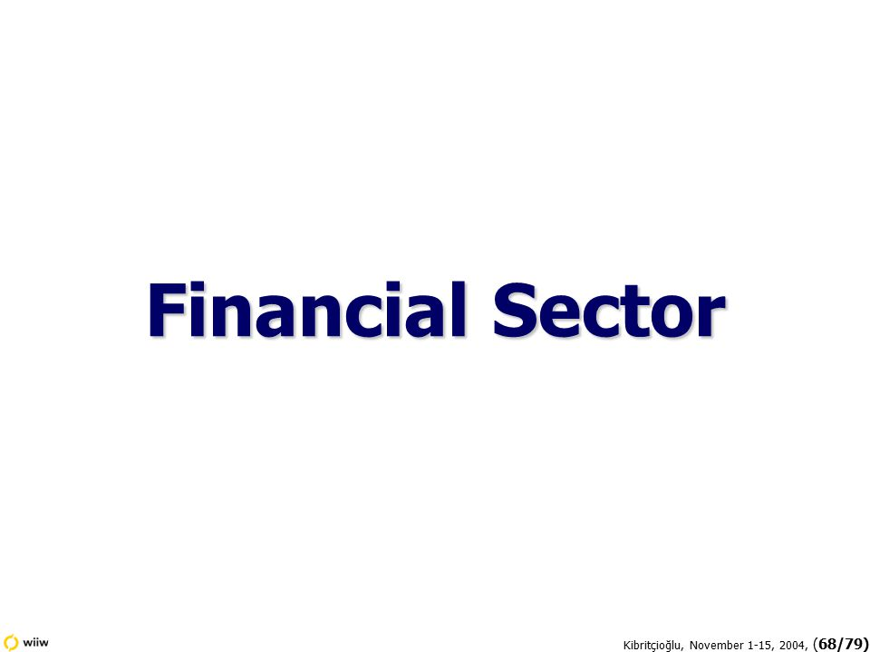 Kibritçioğlu, November 1-15, 2004, (68/79) Financial Sector