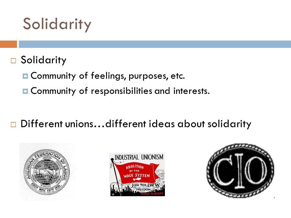 Solidarity  Solidarity  Community of feelings, purposes, etc.