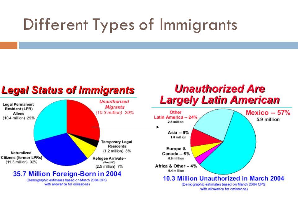 Different Types of Immigrants
