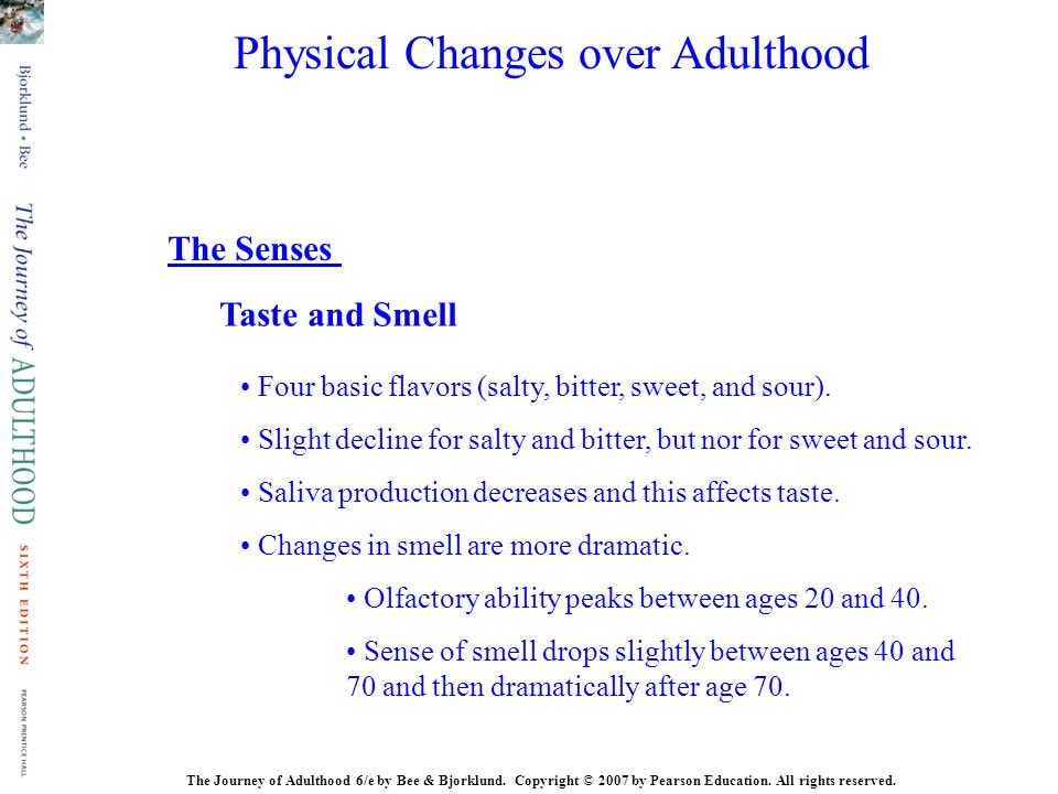 The Journey of Adulthood 6/e by Bee & Bjorklund. Copyright © 2007 by Pearson Education. All rights reserved. Taste and Smell The Senses Four basic fla