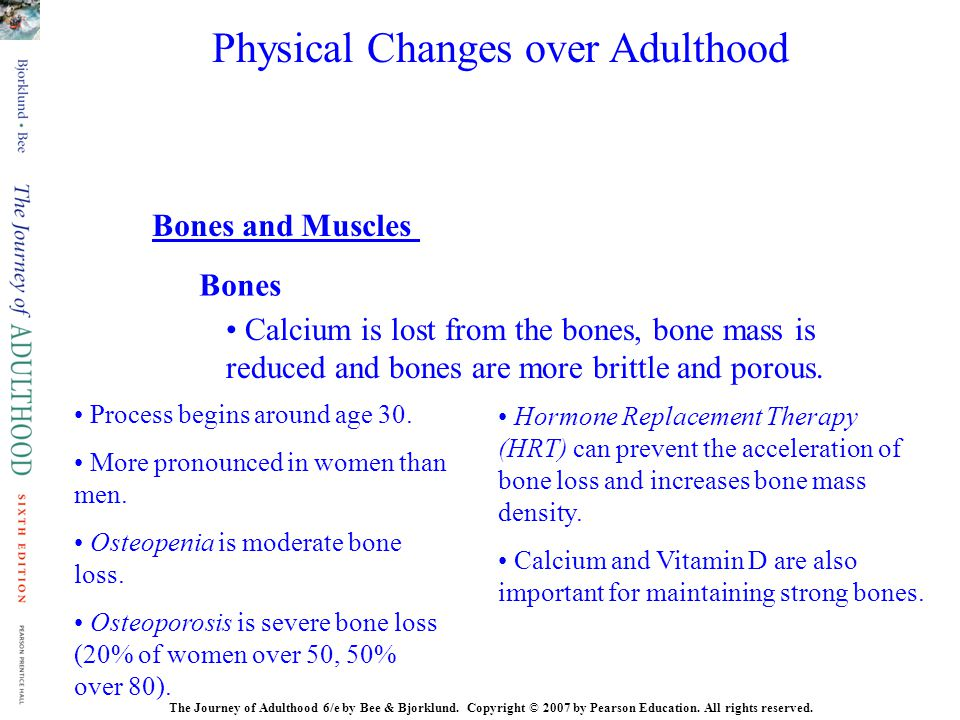 Bones Bones and Muscles Calcium is lost from the bones, bone mass is reduced and bones are more brittle and porous. Process begins around age 30. More