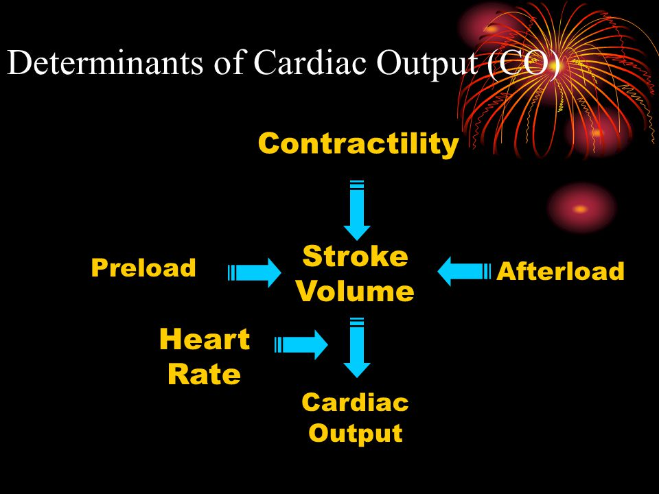 II Cardiac Output  3. Minute Volume, or Cardiac Output – the volume of the blood pumped by one ventricle,  = stroke volume X heart rate.  It varies