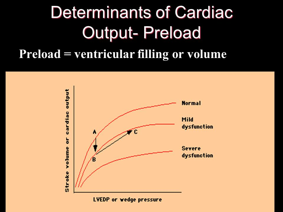 Determinants of Cardiac Output 1. Preload